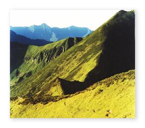 日高山脈 夏の道
